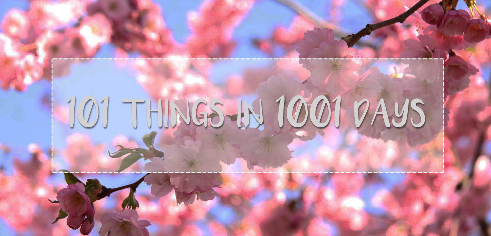 DESAFÍO: 101 cosas en 1001 días